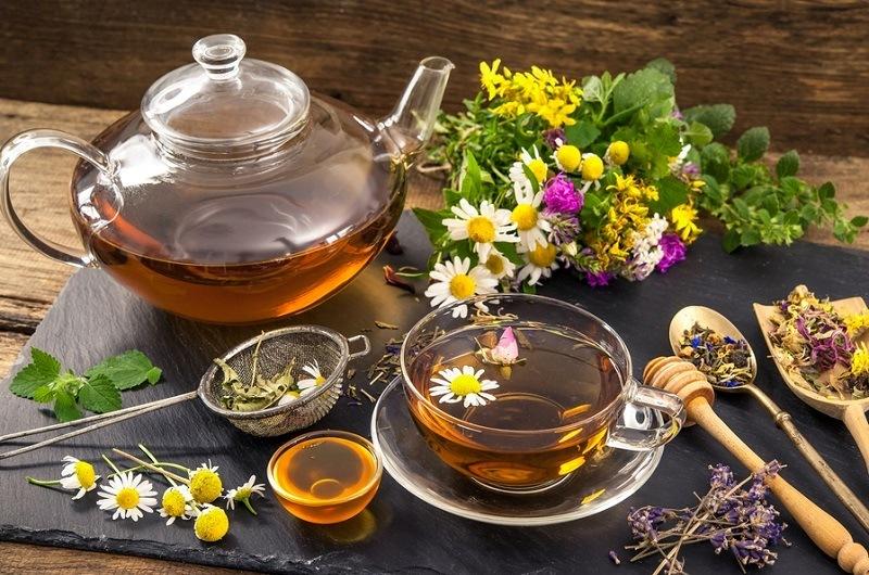 Травяной чай в домашних условиях: как вырастить лекарственные травы на подоконнике