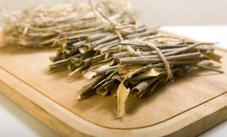 Народная медицина: лечение корой белой ивы