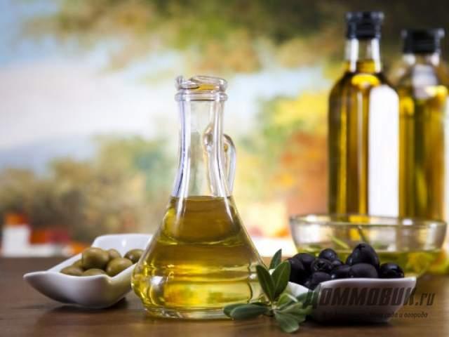 Польза и вред оливкового масла для организма