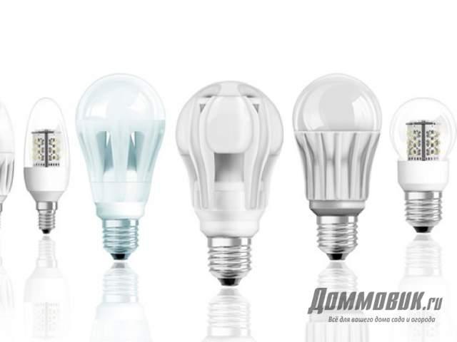 Какую лампочку выбрать для дома