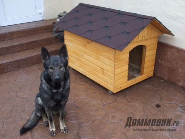 Утепление будки любимой собаке