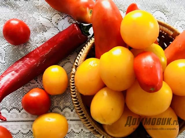 [node:title]томаты