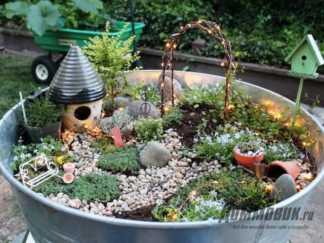 мини-сад в оцинкованном тазу