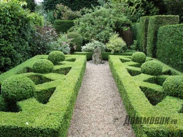 лабиринты из кустарников