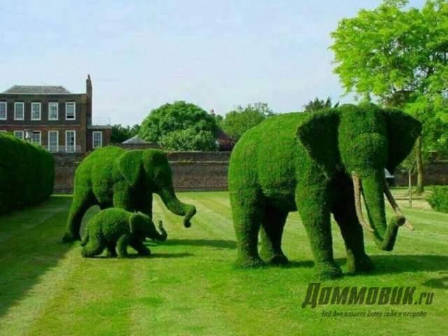 слоны из газонной травы