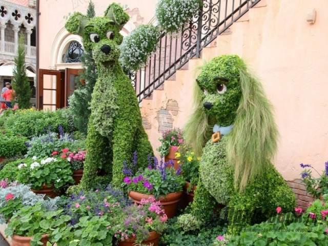 садовые скульптуры из растений