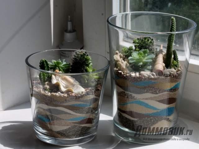 флорариум в вазе