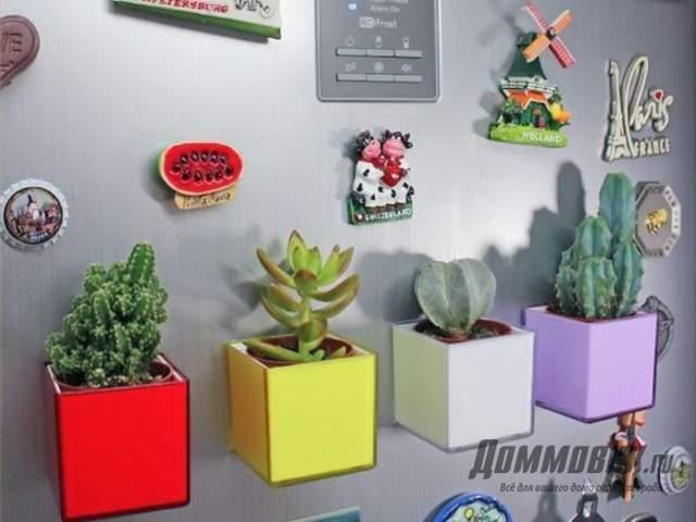 магнитные горшки для кактусов из кубиков