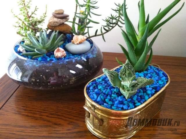 декоративный щебень для кактусов