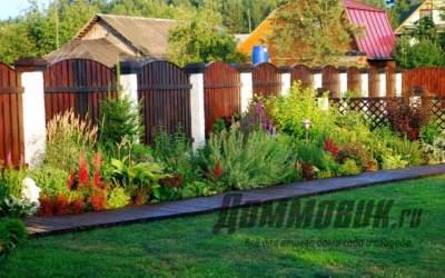 Что посадить вдоль забора на даче чтобы было красиво