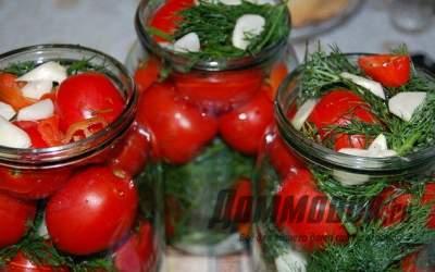 Лучшие рецепты заготовок из помидор