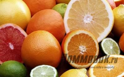 Список самых распространенных цитрусовых фруктов