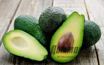 Как посадить и вырастить авокадо
