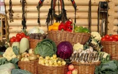 Как подготовить погреб или подвал для хранения овощей