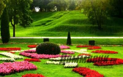 Как красиво обустроить газон
