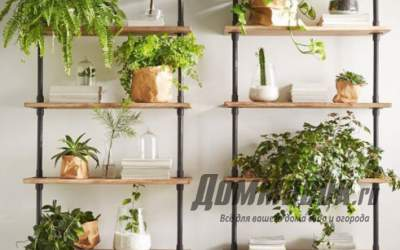 Как украсить интерьер стеллажами для цветов