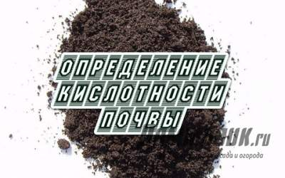 [node:title]