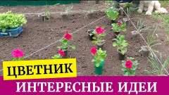 Embedded thumbnail for Красивый цветник: клумба своими руками