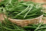 Как посадить и вырастить фасоль