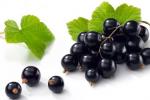 Лучшие сорта черной смородины для выращивания в вашем саду
