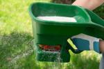 Как поливать газон и какие использовать удобрения
