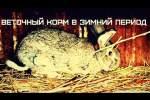 Embedded thumbnail for Чем кормить кроликов зимой