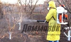 Embedded thumbnail for Опрыскивание деревьев осенью