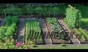 Embedded thumbnail for Формы грядок под овощи