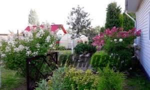 Embedded thumbnail for Как украсить сад осенью на даче