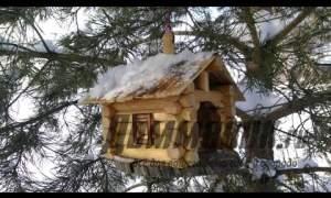 Embedded thumbnail for Как сделать кормушку для птиц из дерева
