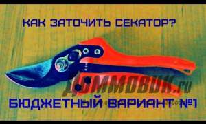 Embedded thumbnail for Как наточить секатор